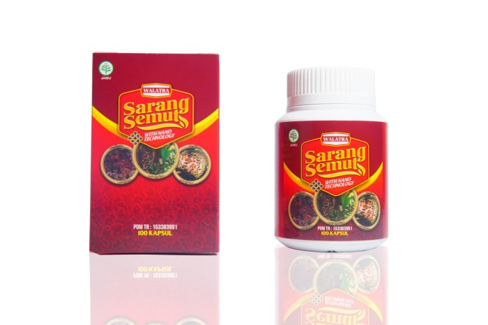 Foto Produk Walatra Sarang Semut 100% ASLI PAPUA dari herbal siger