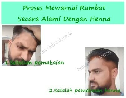 Jual Natural Henna Powder For Hair Godrej Nupur Pewarna Rambut Alami