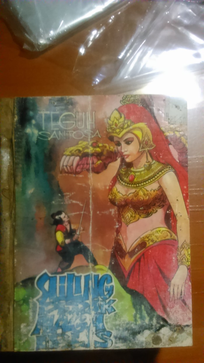 Jual Komik Silat Teguh Santosa Suling Perak Naga Iblis 15 Buku Tamat Jakarta Selatan My PaperShopping