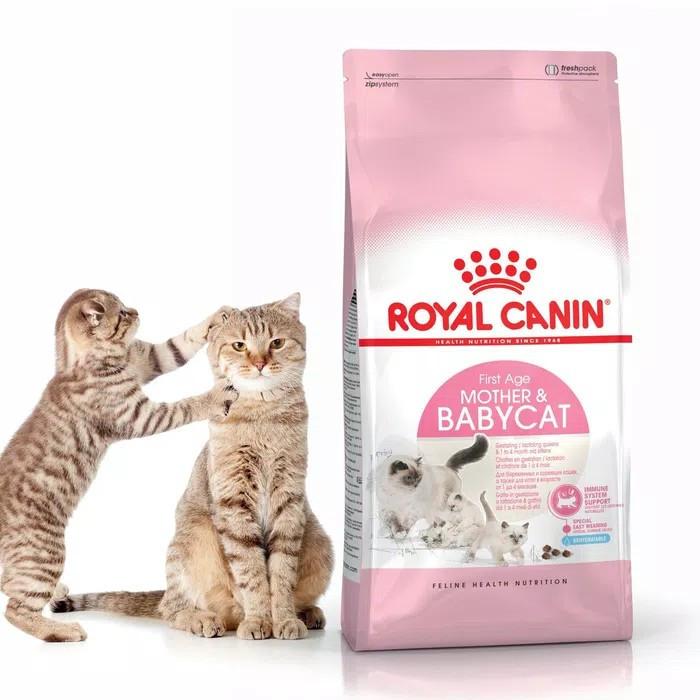 Jual Royal Canin Mother Kitten 400gr Makanan Khusus Ibu Dan Anak Kucing Kab Garut Warung Pria Tokopedia