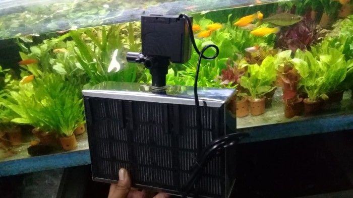 Jual Filter Aquarium Tanpa Kuras