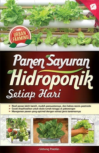 Jual Buku Panen Sayuran Hidroponik Setiap Hari Dki Jakarta Bang Kiting Tokopedia