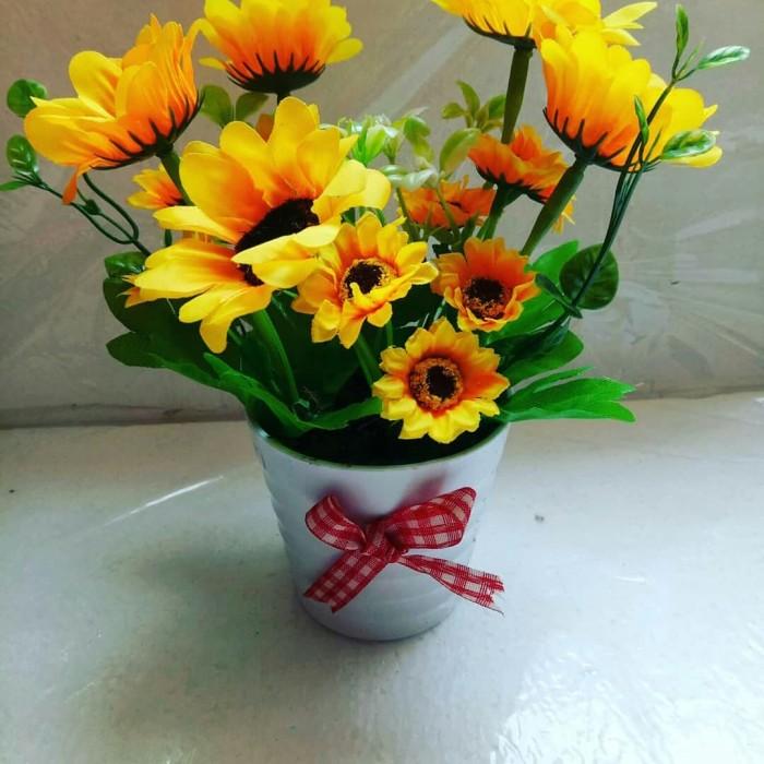 Gambar Bunga Matahari Cantik Gambar Bunga Hd