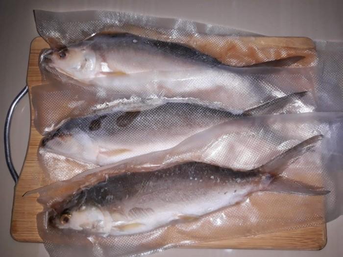 ikan bandeng tanpa tulang