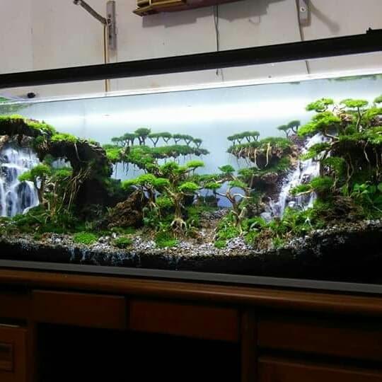 Jual Aquarium aquascape air terjun - Kota Depok - hasanahh ...