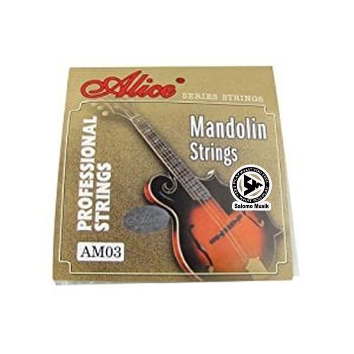 harga Alice mandolin string / senar mandolin am03 Tokopedia.com