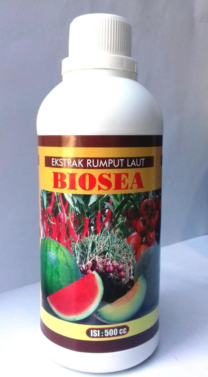 Jual Pupuk Organik Amino Acid BIOSEA Ekstrak Rumput Laut 500ml Kab Lamongan Sumberjayatani