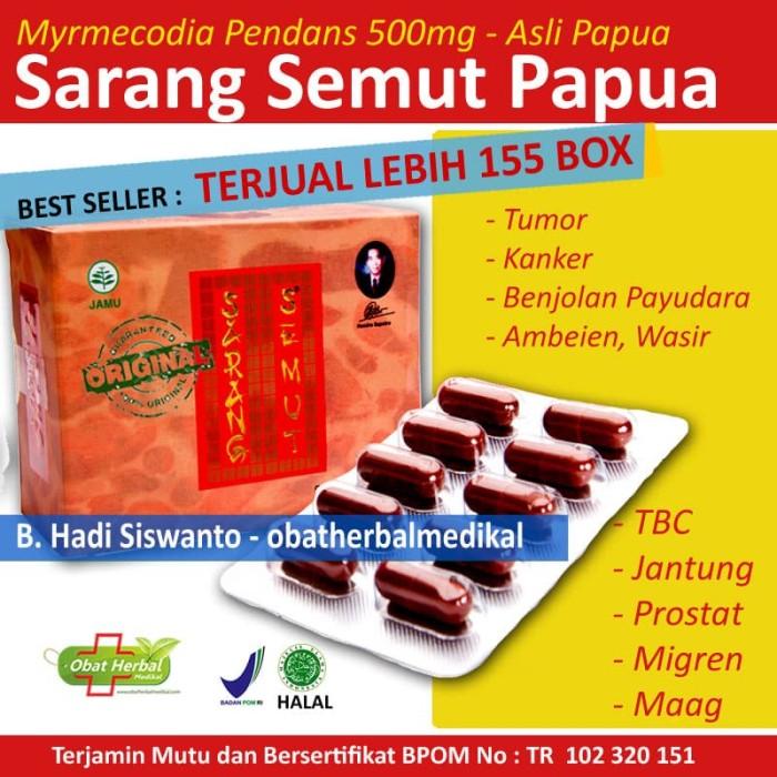 Foto Produk Obat Herbal Jantung, Batu Ginjal, Maag, Ambeien Sarang Semut Papua dari Obatherbalmedikal