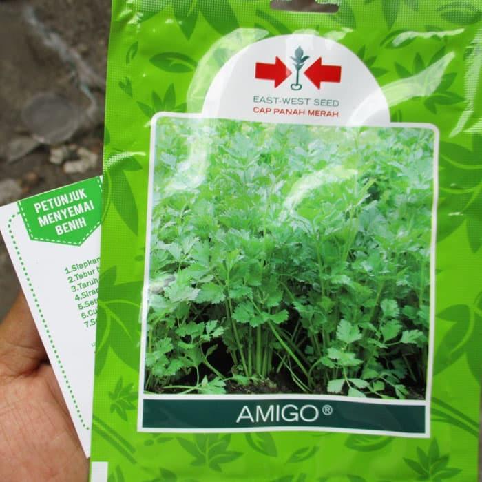 Foto Produk Seledri Amigo 10.000biji dari mewalik-jaya