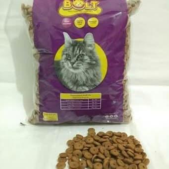 80 Gambar Binatang Kucing Dan Makanannya Gratis Terbaik