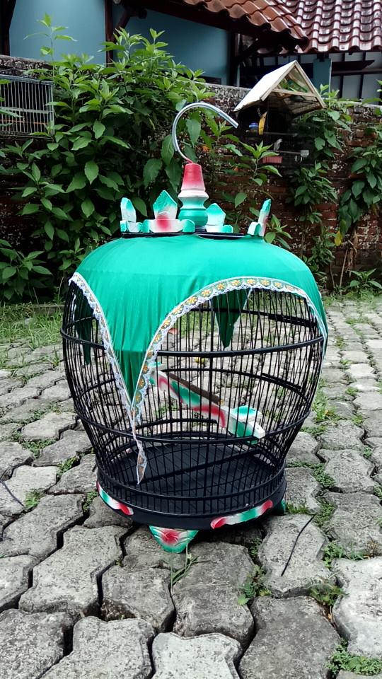 harga Sangkar burung perkutut tekukur Tokopedia.com
