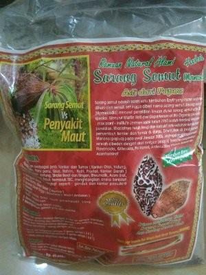 Unik Sarang Semut Rebus Asli Papua 100 gr UD Fira Papua Limited