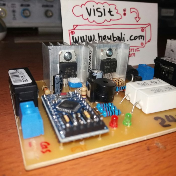Foto Produk kit cas aki otomatis 12V atau 24V sudah digital pwm dari HeyBali