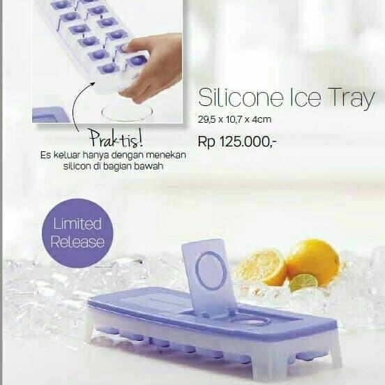 silicon ice tray(1)