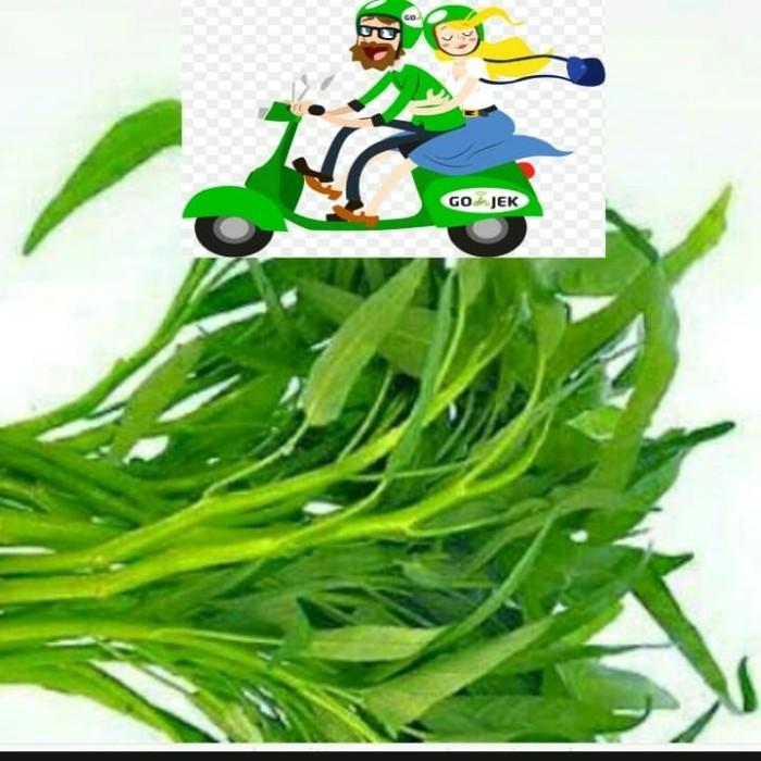 Jual Kangkung Sayur Sayuran Kab Bogor Elektronikcahaya