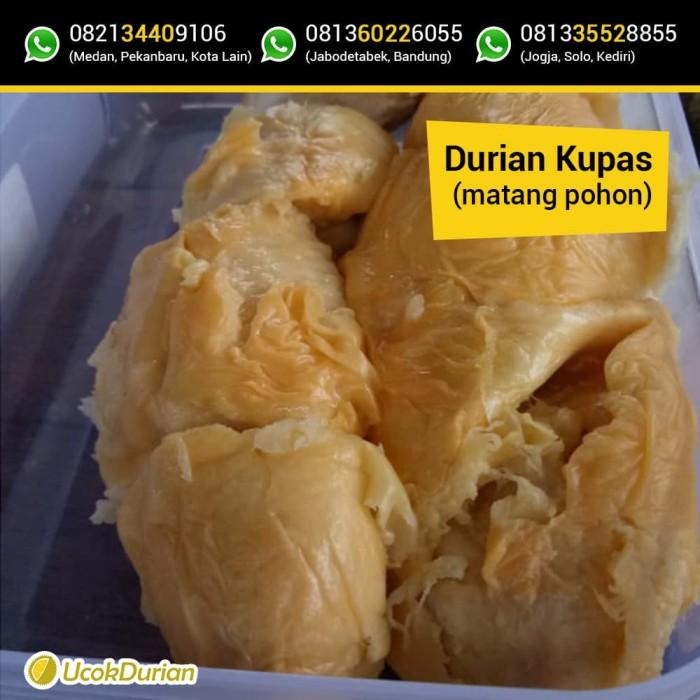 jual durian kupas ucok medan paket 1 box jakarta selatan ucok rh tokopedia com