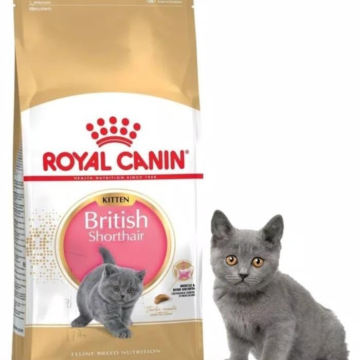 Jual Rc Royal Canin Kitten British Shorthair 2 Kg Anakan Kota Depok Happycatshop Tokopedia
