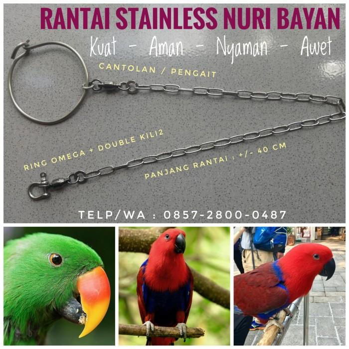 Jual Jual Rantai Stainless Burung Nuri Bayan Kota Surakarta Tantin Store Tokopedia