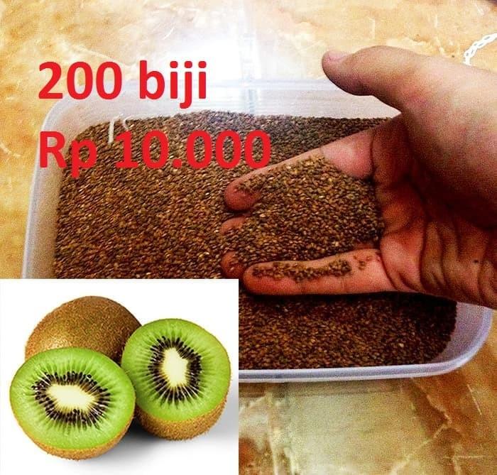 Foto Produk Benih Biji Bibit Kiwi Hijau Actinidia deliciosa dari Biji Benih