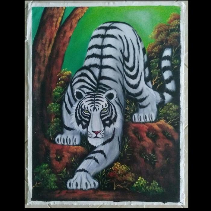 77 Gambar Keren Macan Putih Terbaik