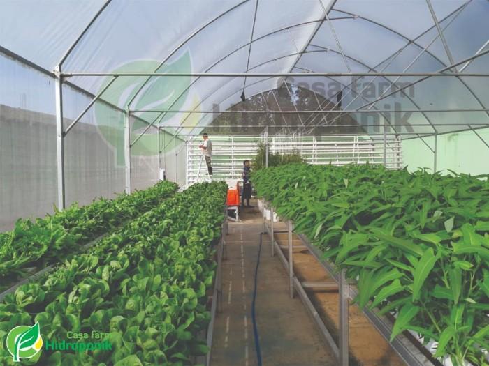 Jual Insect Net Jaring Kelambu Screen Untuk Green House Mesh 66 Lebar 3 M Kota Bandung Hidroponik Casa Farm Tokopedia