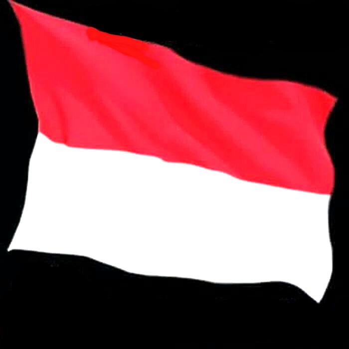 Jual Bendera Merah Putih Uk 60 X 90 Jakarta Barat Teguh Fotocopy Tokopedia