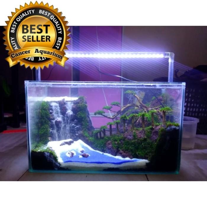 Jual 3 Paket Aquascape Design 50x25x30 Jakarta Selatan Cancer Aquarium Tokopedia