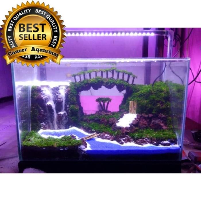 Jual 2 Paket Aquascape Design 50x25x30 Jakarta Selatan Cancer Aquarium Tokopedia
