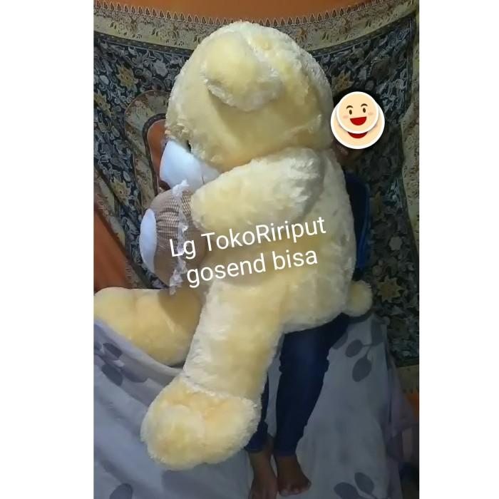 Jual boneka big giant super jumbo teddy bear  6543812ea9