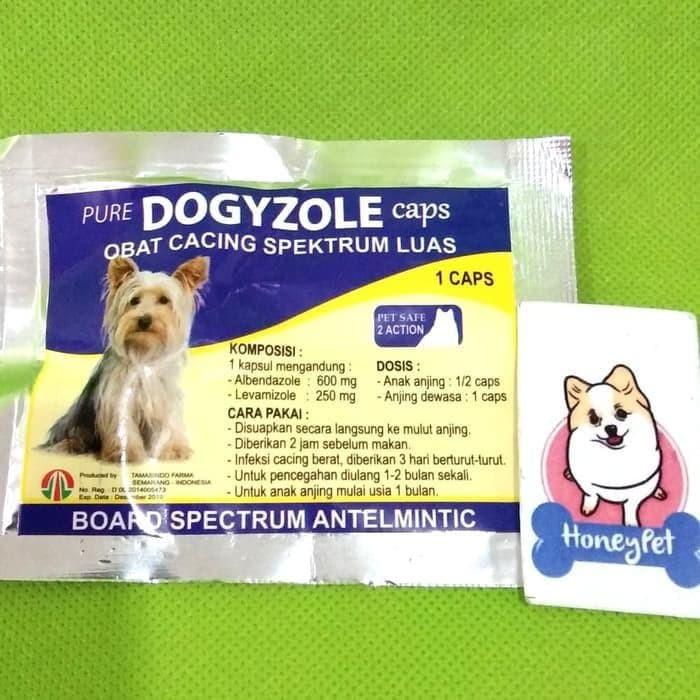 Jual Obat Cacing Anjing Dogyzole Capsule 1 Cap Jakarta Pusat Erlinawati Tokopedia