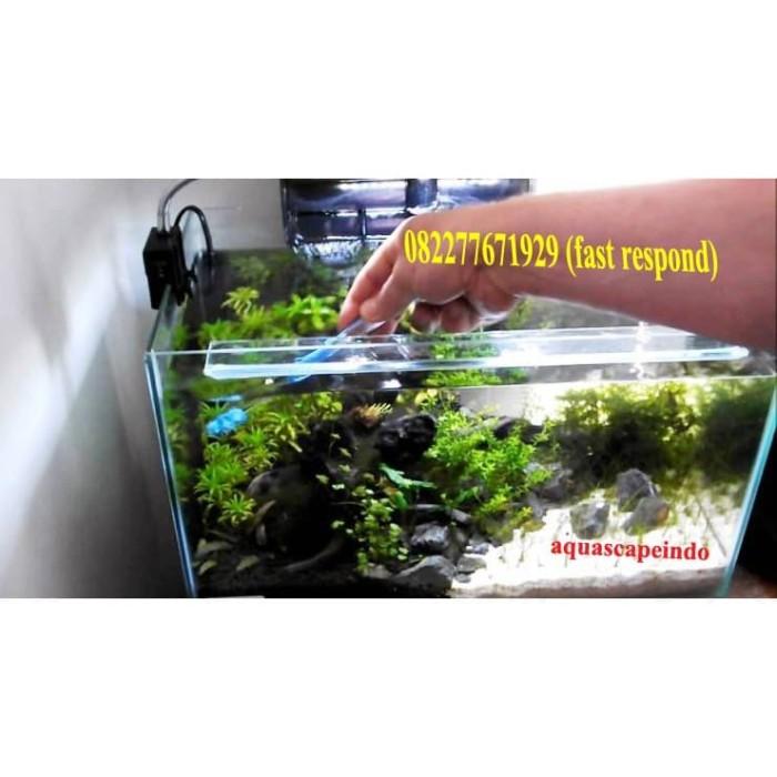 Jual Pemandangan Aquarium Aquascape Indonesia Kab Bogor Aquascapeindo Tokopedia