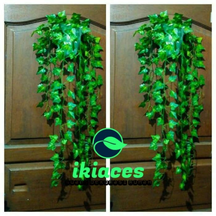 Foto Produk Daun Rambat Juntai Daun Hias Artificial Daun Plastik Dekorasi Dinding dari ikiaces