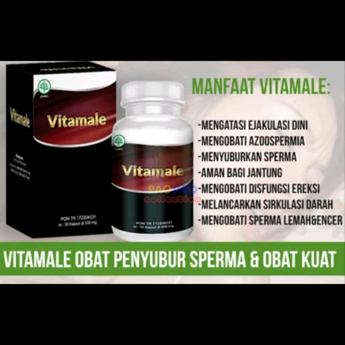 Jual Vita Male Hwi Suplemen Stamina Pria Jakarta Barat Paopao