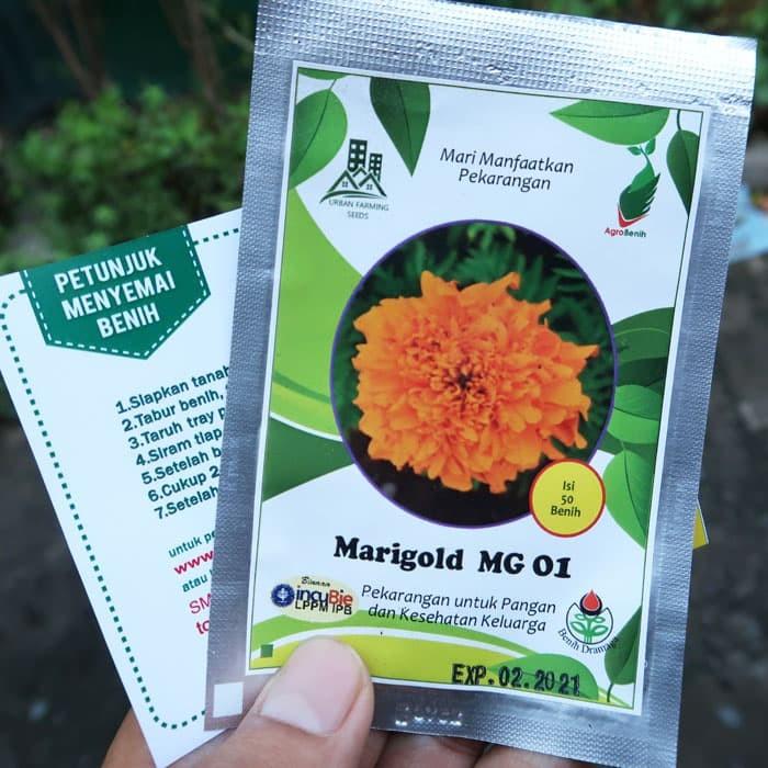 Foto Produk Bunga Marigold MG01 dari mewalik-jaya