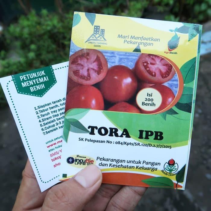 Foto Produk Tomat Tora IPB dari mewalik-jaya