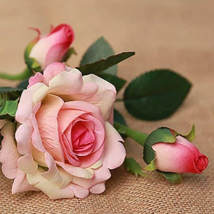 Jual Bunga Mawar Hias Bunga Mawar Kuncup Kuntum Bunga Mawar Rose Bunga Hias Kota Bandung Anita Yunita Tokopedia