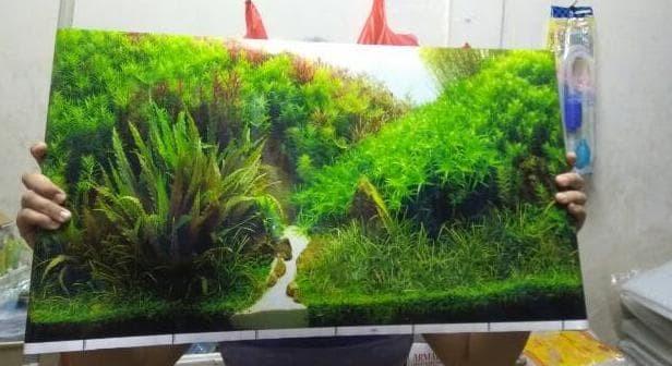 Jual Wallpaper Aquarium Gambar Belakang Aquascape Tinggi 40cm Termurah Jakarta Barat Olastore1 Tokopedia