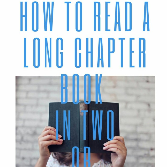 Jual How To Read A Long Chapter Book In Two Or Three Hours Ebook Kota Bandung Soa Chili Tokopedia