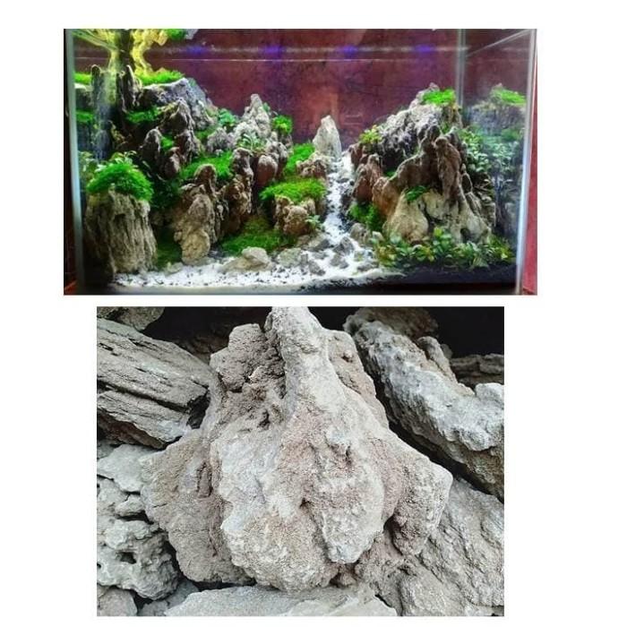 Jual 1 Kg Batu Fosil Pasir Aquarium Aquascape Kota Tangerang Selatan Andri Panjul Tokopedia