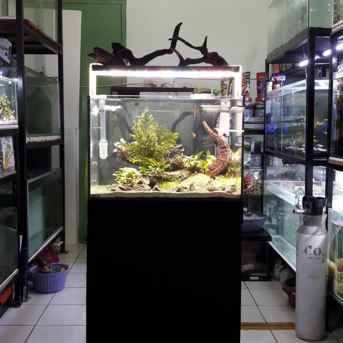 Jual Akuarium Aquascape Komplit Natural Fullset Jakarta Selatan Salita Store Tokopedia