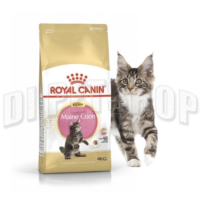 Jual Royal Canin Kitten Maine Coon Mainecoon 4kg Freshpack Jakarta Barat Di Petshop Tokopedia