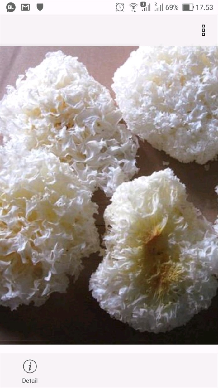 Jual Jamur Kuping Putih Kering Jamur Salju 50g Jakarta Pusat Makanan Sehati