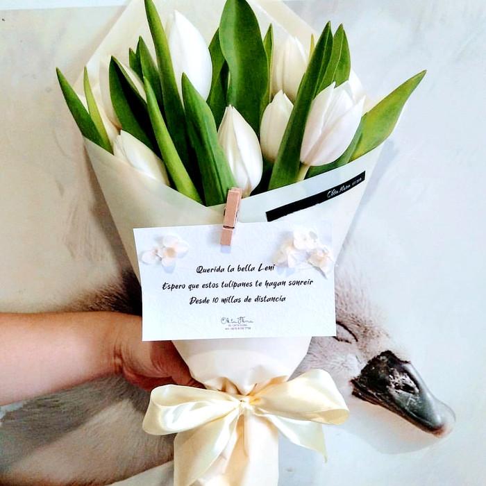 Jual Bunga Tulip Wrap Simple Kartu Ucapan Jakarta Barat Foliage Tokopedia