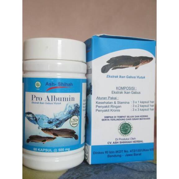 Pro Albumin 100% Ekstrak Ikan Gabus / kutuk | Kapsul JEEN