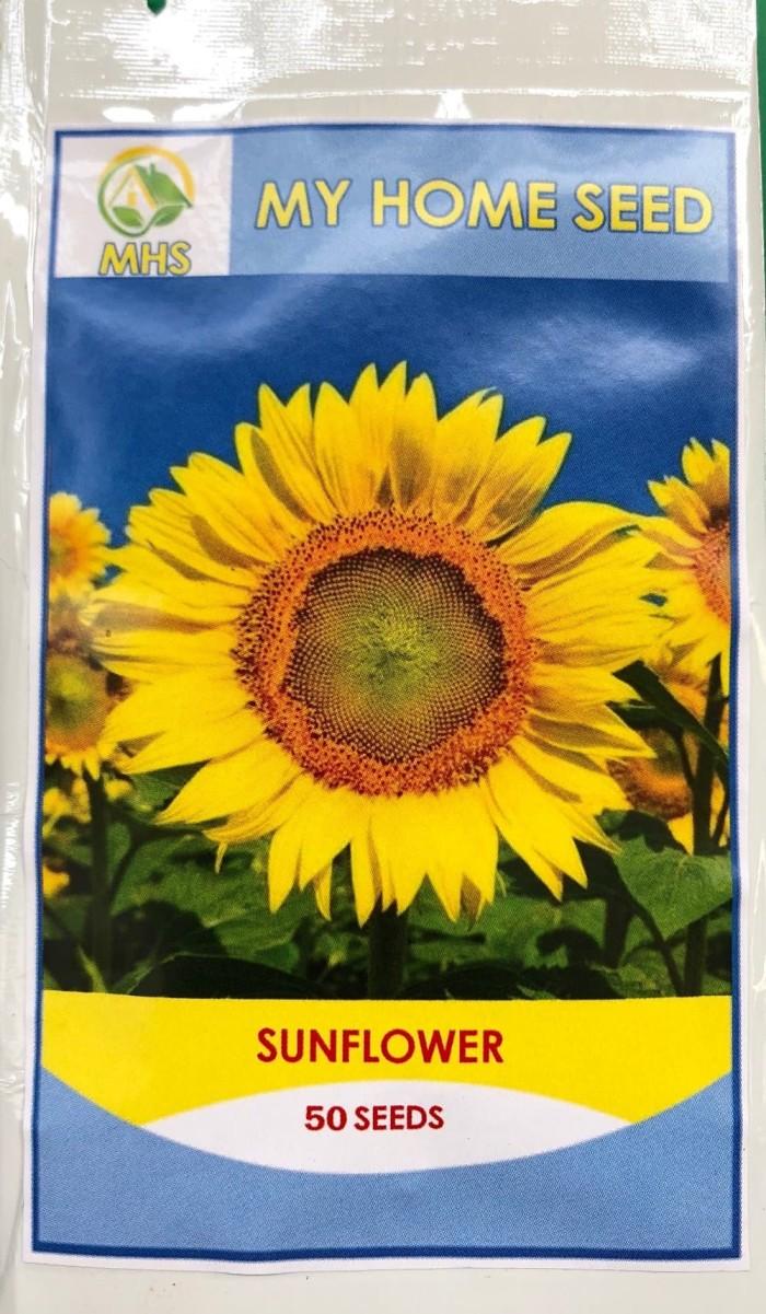 Jual Benih MHS Sunflower Bunga Matahari Isi 50 Seeds Jakarta Pusat Beauty Cosmetik Center