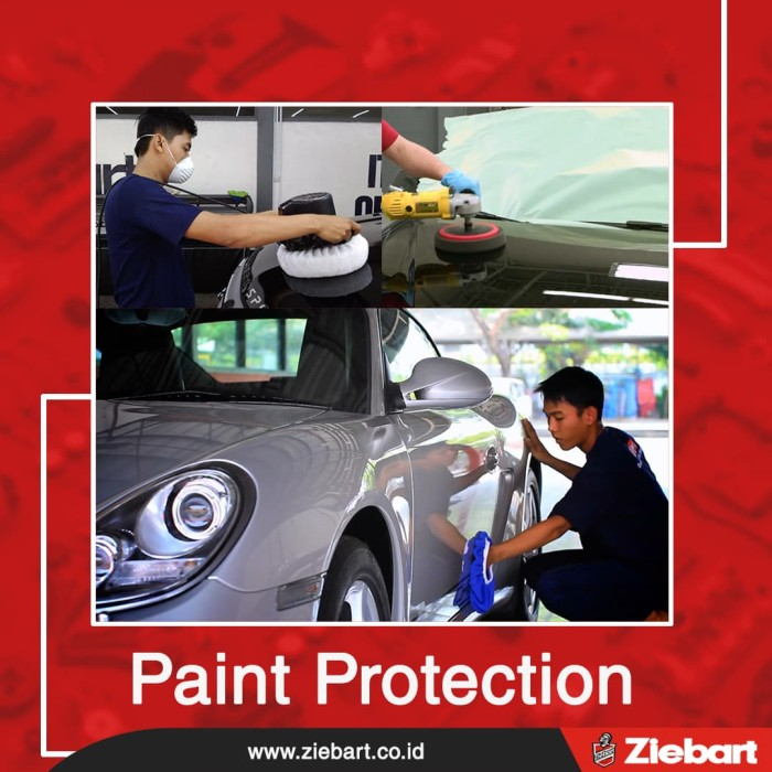 Car Paint Protection >> Jual Ziebart Paint Protection Small Car Jakarta Pusat Ziebart Official Store Tokopedia