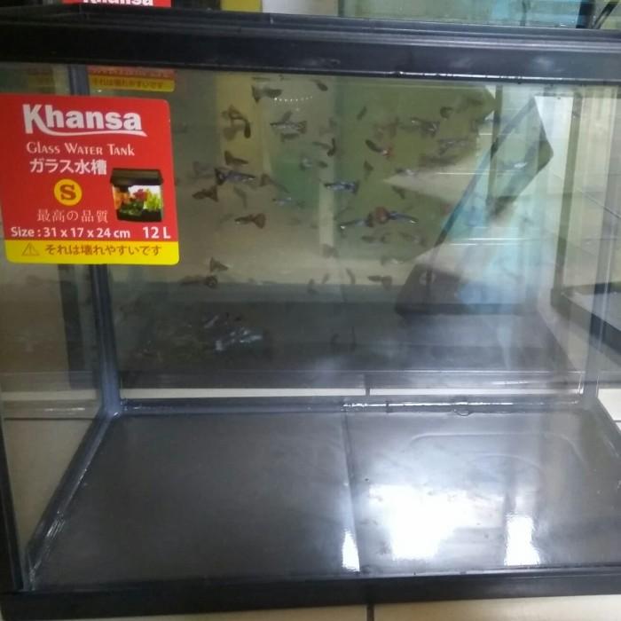 Jual Aquarium Khansa Ikan Cupang Guppy Reptil Ukuran Size S Jakarta Barat Almarhum13 Tokopedia