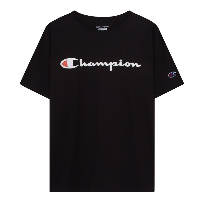 90846139f Jual Champion Men s Graphic Jersey Tee