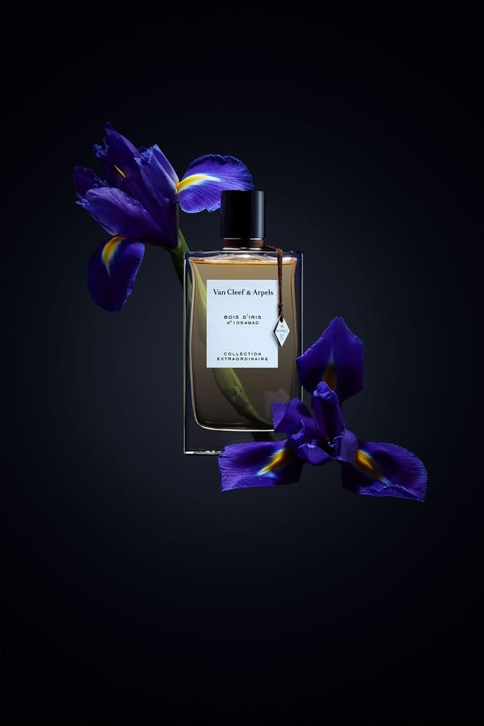 Jual Bois D\'Iris - Van Cleef & Arpels (Collection Extraordinaire) - Jakarta  Barat - Smells & Chemistry | Tokopedia