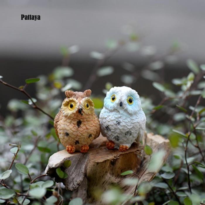 Download 70+  Gambar Burung Hantu Bo  Paling Unik Free